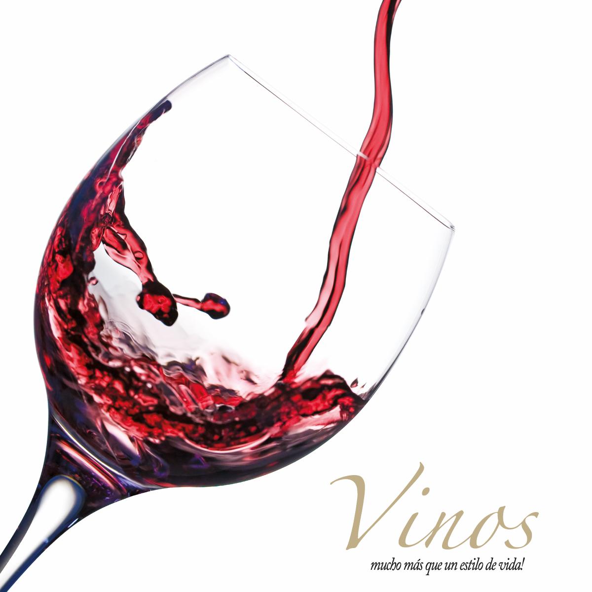 Catálogos Vinos